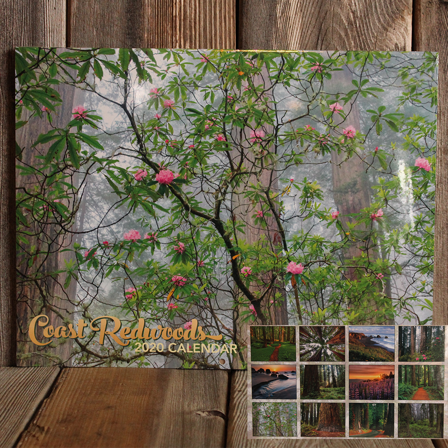 2020 Coast Redwood Calendar