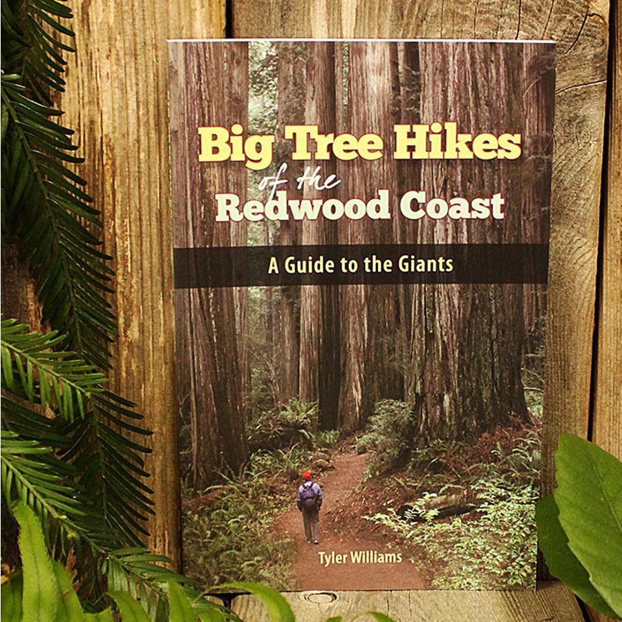 Big Tree Hikes of the Redwood Coast