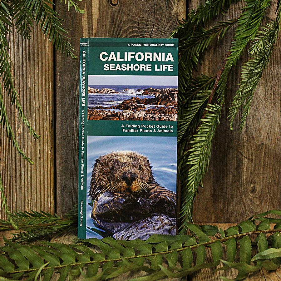 California Seashore Life Pocket Guide