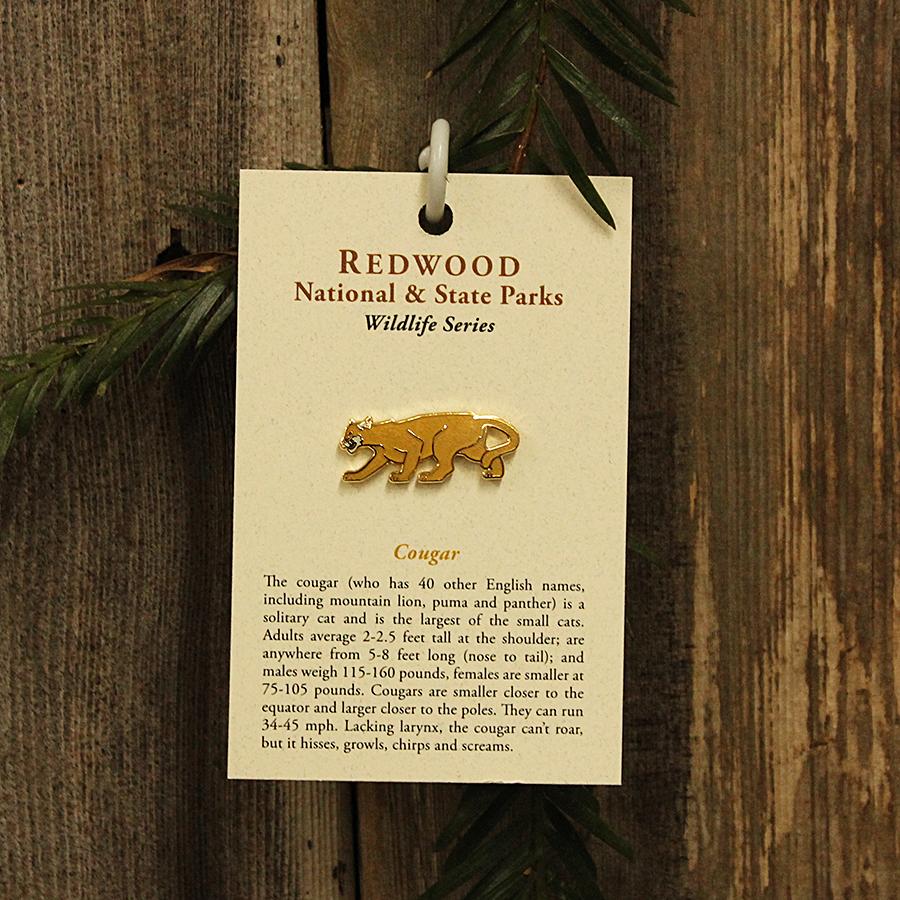Mountain Lion, or Cougar, Pin
