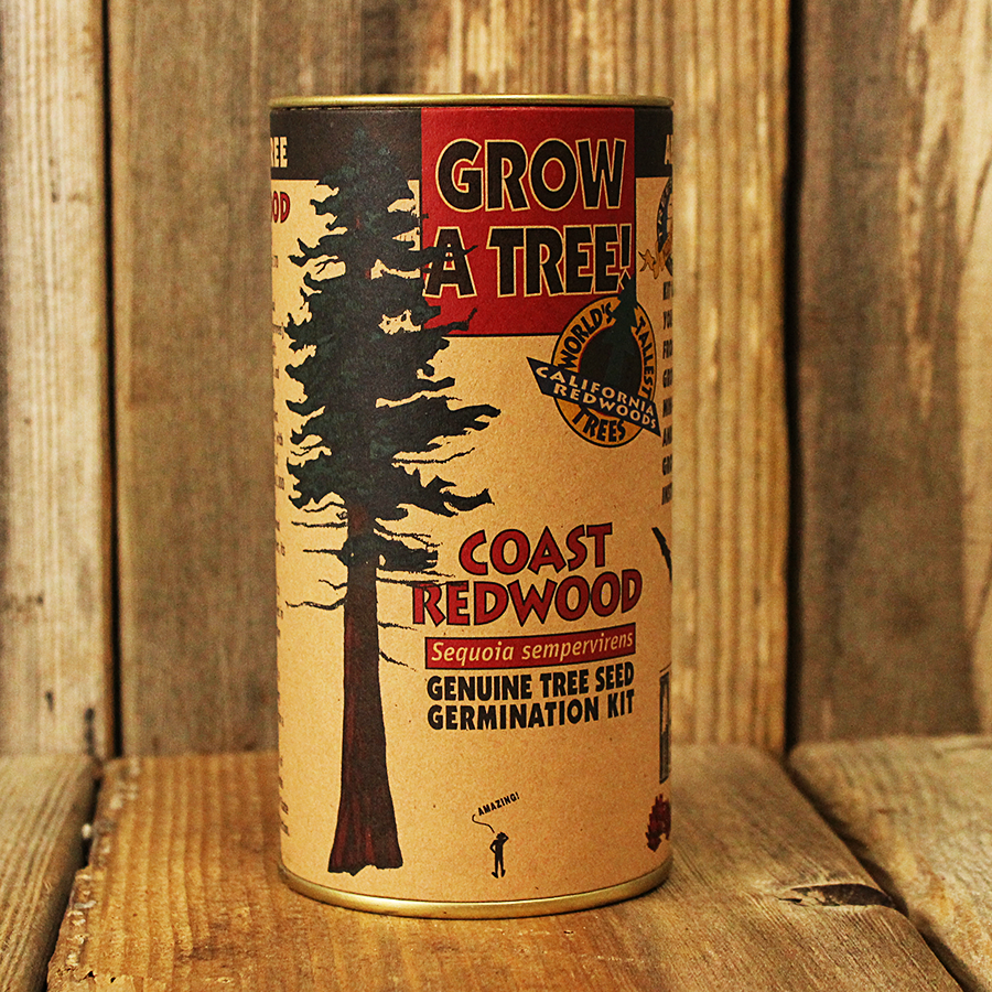 Grow a Tree! Coast Redwood Germination Kit