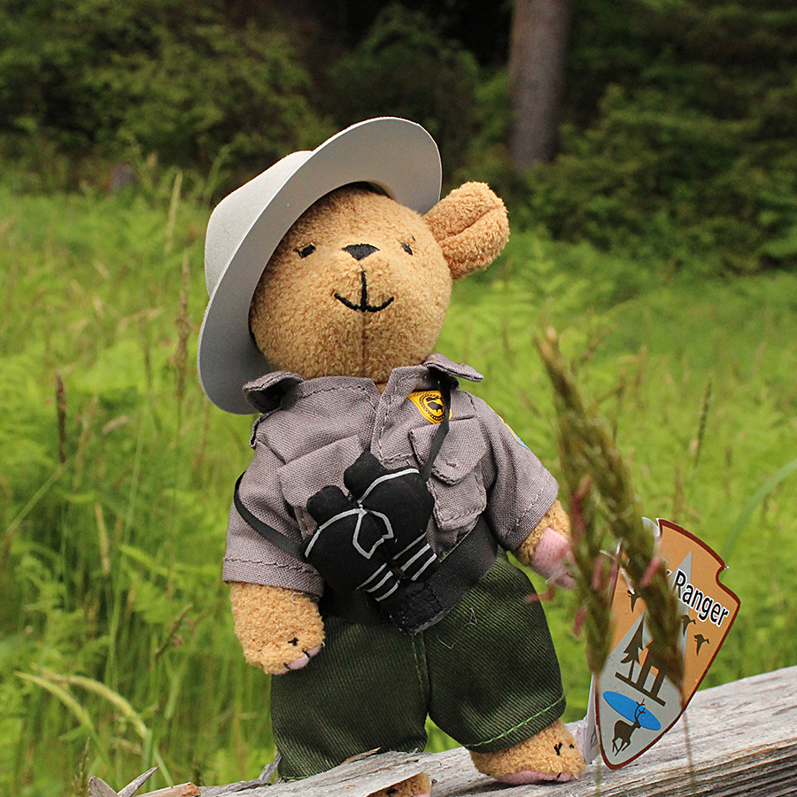 Park Ranger Bear stands six inches tall with it's own little binoculars, and ranger uniform with hat