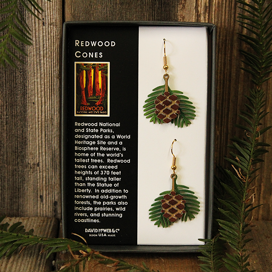 Redwood Cones Earrings
