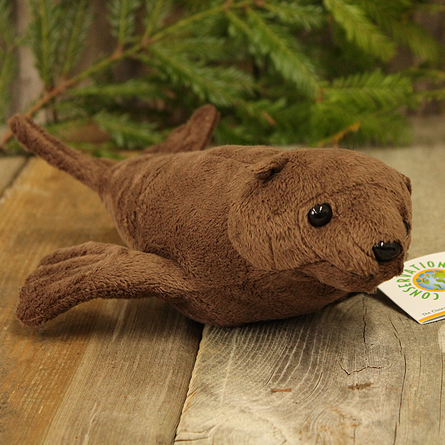 Little Plush Stuffed Sea Lion