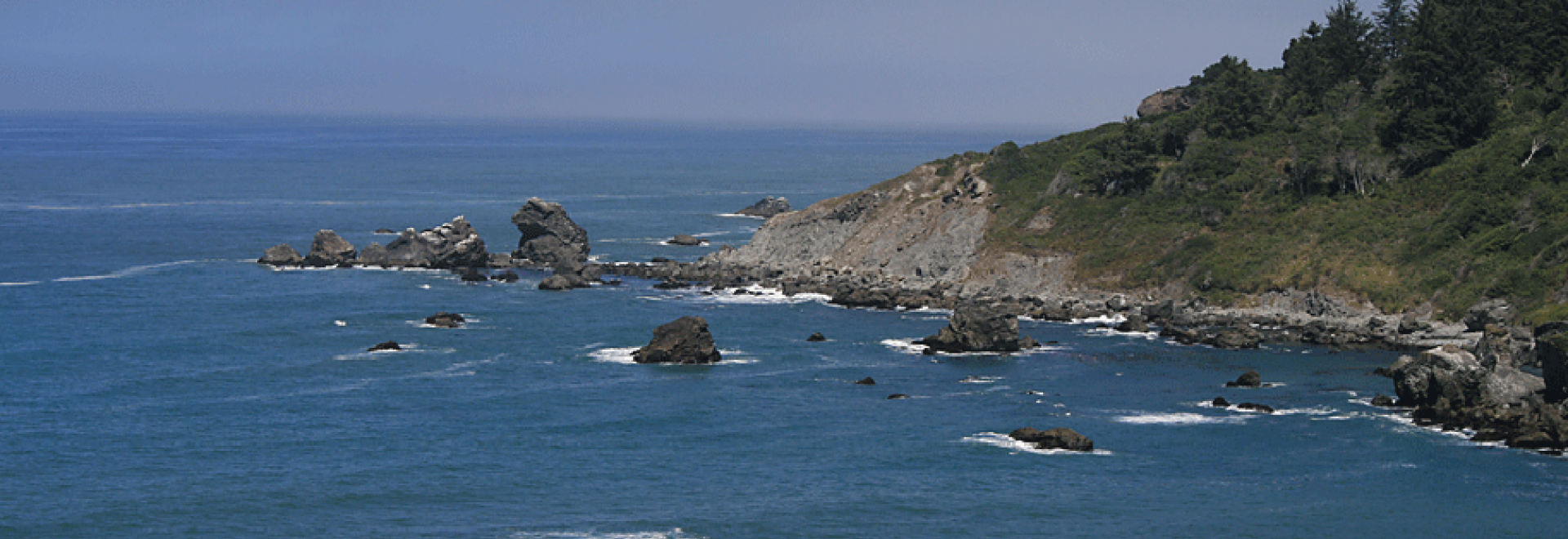The view from Palmer's Point of Rocky Point at Patrick's Point State Park