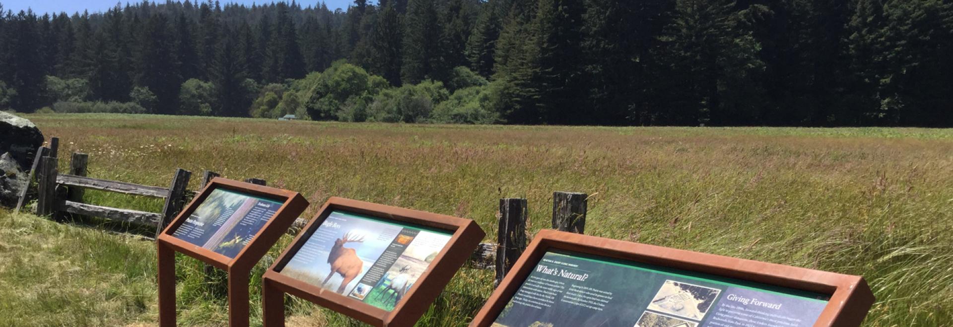Wayside signs at Prairie Creek Redwoods State Park