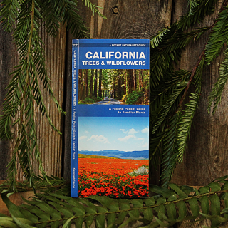 California Trees and Wildflowers Pocket Guide, general pocket guide to the trees and wildflowers of California