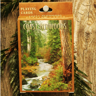 Coast Redwood Playing Cards standard deck with redwood forest pictures