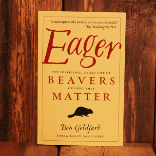 Eager, the surprising, secret lives of beavers and why they matter.