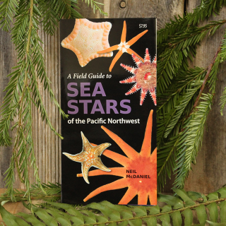 A Field Guide to Sea Stars of the Pacific Northwest