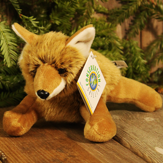 Little Plush Coyote Cub