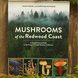 Mushrooms of the Redwood Coast
