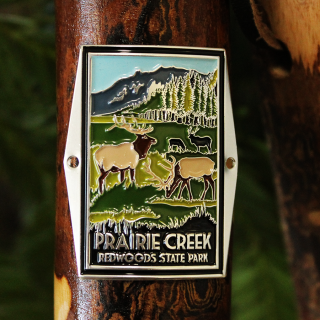 Prairie Creek Redwoods State Park Hiking Stick Medallion