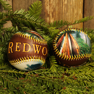 Redwood Baseball