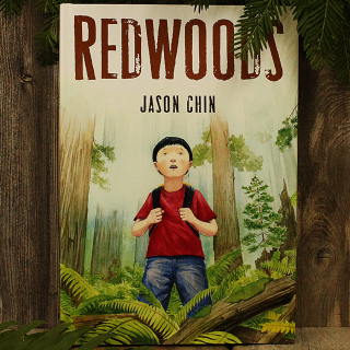 A young boy's journey to discover the wonders of the redwoods