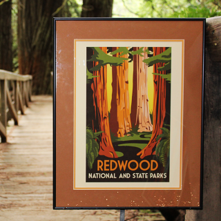 "Redwood National and State Parks WPA Style Poster, measures 13""x18"""